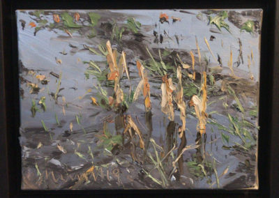 Maisstoppeln II, 18x24 cm