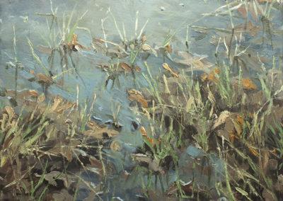 Sumpf I, 50x60 cm