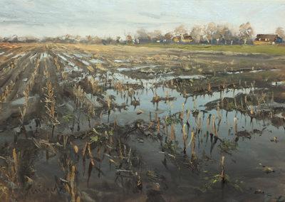 Überschwemmtes Feld, 50x80 cm