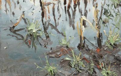 Mathias Meinel – Landschaften