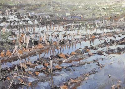 Mathias Meinel: Überschwemmtes Feld, 30 x 40 cm