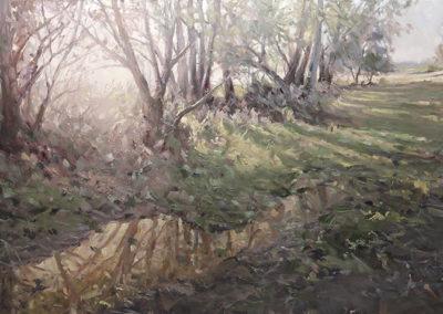 Mathias Meinel: Bäume im Gegenlicht, 120 x 200 cm