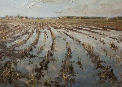 Mathias Meinel, Feld nach Regen, Öl auf Leinwand, ca. 40 x 50 cm